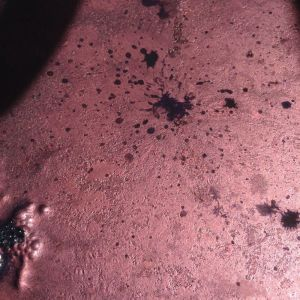today the natural vat has a good coppery sheen but little flower. however, it is dyeing well